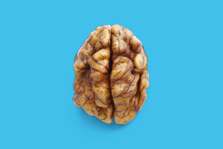 brain-for-food
